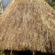 Makna Hidup Bersama Suku Hubula/Huwula Lembah Balim