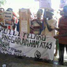 Tuntutan Dari Papua Selatan