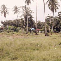 BPN Nabire: Batalkan Terbitkan Sertifkat Tanah yang Disengketakan di Suku Wate, Nabire