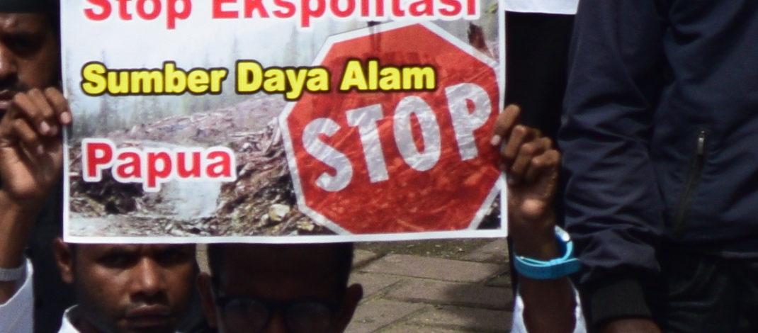 Daftar Perusahaan Sawit dan Tambang Yang Beroperasi di Tanah Papua