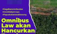 Papua: Rekaman dan Refleksi Oktober 2020, Part I
